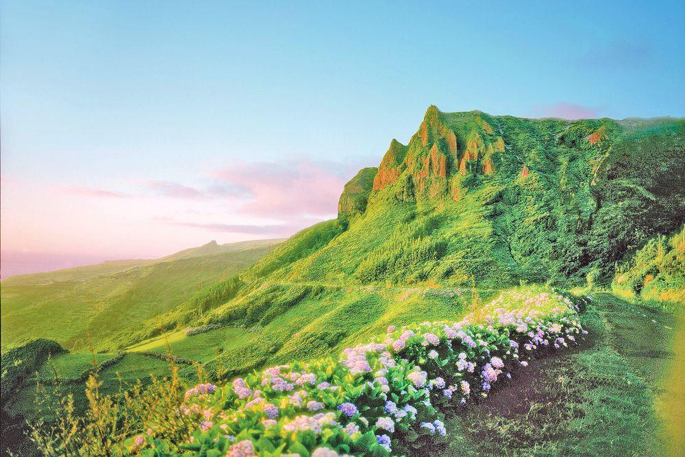 Rocha dos Bordões, Flores