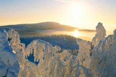 Standortreise Winterwunder Levi