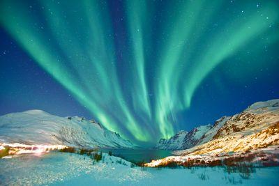 Aktivreise Aurora Borealis meets Wildlife