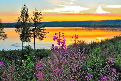 Aktivreise Stippvisite Schwedisch Lappland